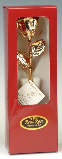 Gold-Rose-12 inch-box